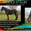 HIDOLE D'ALBY